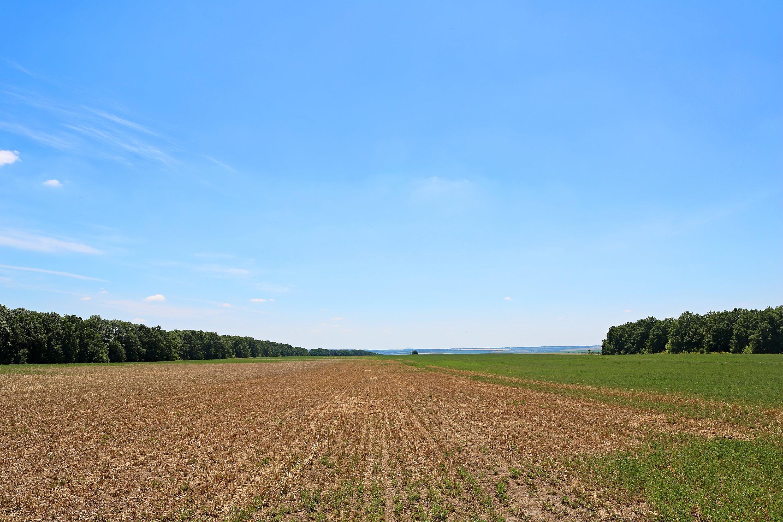 Fallow soil 1-1