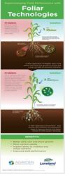 Foliar_infographic