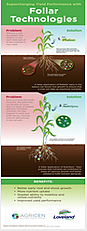 Foliar_infographic