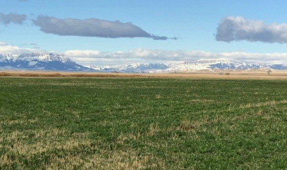 blog.agricen.comhs-fshubfsBroken O Ranch Montana