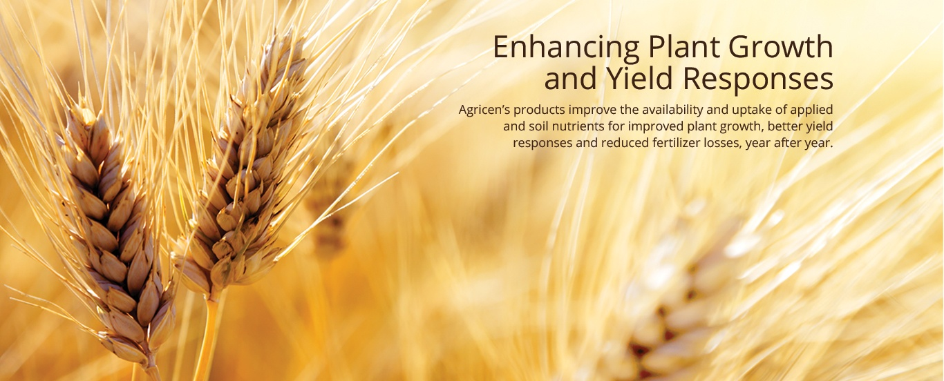Enhancing Plant Growth and Yield Responses