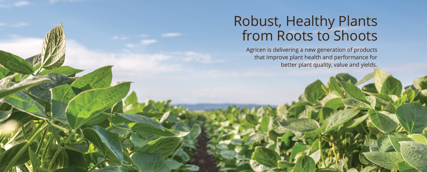 Robust, Healthy Plants from Roots to Shoots