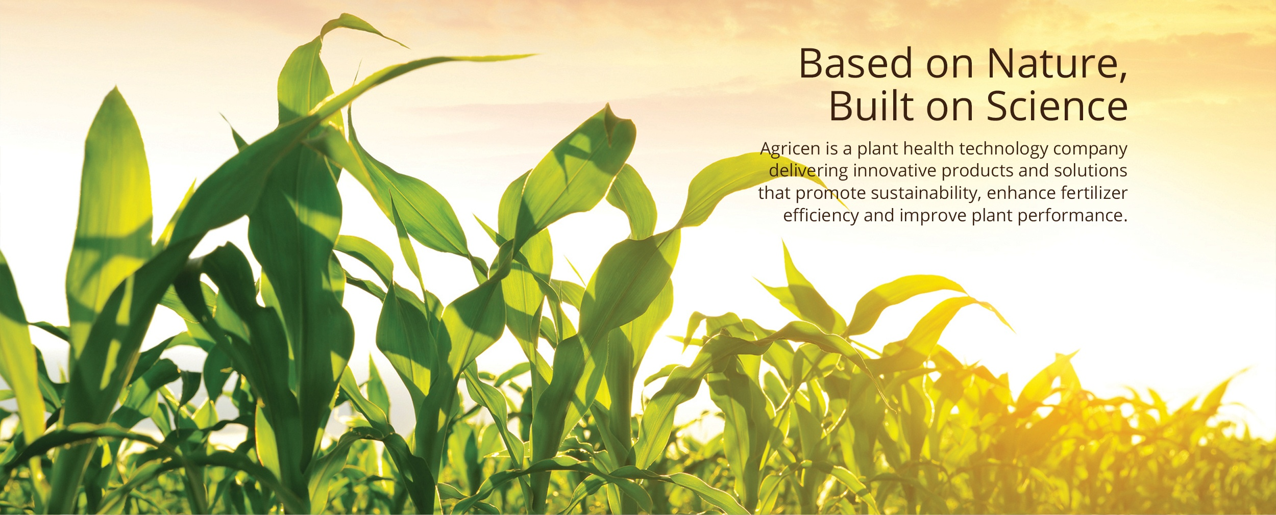 Plant Nutrition | Plant Health Technology | Agricen
