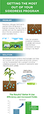 Sidedress_Infographic